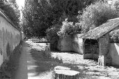 Les lavoirs de Brou (Philippe_28) Tags: brou 28 eureetloir france europe argentique analogue camera photography photographie film 135