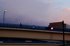 紫曇染みて渡り (Yorozuna Yūri / 萬名 游鯏(ヨロズナ)) Tags: xm1 fujifilm pentaxsmctakumar55mmf18 takumar oldlens 飯田橋 千代田区 東京都 東京 iidabashi chiyodaward chiyoda tokyo japan 高架 overpass 陸橋 橋 歩道橋 bridge footbridge pedestrianbridge 信号機 信号 signal 赤信号 交通標識 標識 roadsign sign 夕方 夕暮れ 夕闇 夕刻 evening twilight 薄暮 日暮れ 日没 日没時 日暮れ時 夕暮れ時 雲 cloud 渡る