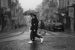 Summertime, and the livin' is easy (Adam Bonn) Tags: leica leicam9 leicam 7artisans 7artisans50mmf11 50mm blackandwhite blackwhite monochrome porto street streetphotography candid umbrella rain fog foggy m9p m9