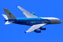 """Hi Fly Malta Airbus A380-841 """"Save the Coral Reefs"""" 9H-MIP (Manuel Negrerie) Tags: fly malta airbus a380841 savethecoralreefs 9hmip airliner avgeeks livery design aviation airlines mirpurifoundation technology canon flying spotting travel skies flight plane"""