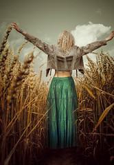 Wheatfield (Colby Files Photography) Tags: colbyfiles adventure barnstormtour beauty blonde boots fashionart fashon greenhouse roads roadtrip santefe selinabaca softlighting theadventure travel