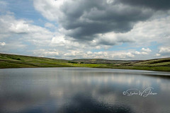SJ1_8775 - Walshaw Dean Lower Reservoir (SWJuk) Tags: swjuk uk unitedkingdom gb britain england yorkshire westyorkshire calderdale reservoir water walshawdeanlowerreservoir walshawdean flat calm reflections hillside hills moorland moors peatmoorland grasses bluesky clouds countryside landscape scenery view 2019 jun2019 summer nikon d7200 nikond7200 rawnef lightroomclassiccc