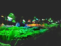 Life's Ecstasy (Sagor's) Tags: bazar abstract abstractphotography vegetables color colors colorful colours dhaka streetphoto lowlight lights bulbs ggmsagor ggm sagor morshed morshedsagor huaweigr huawei huaweig552017 mobilephoto mobilephone mobile mobilephotography instant sudden market vegetable
