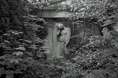 Grabstein Engel Berlin 19.6.2019 (rieblinga) Tags: berlin grabstein engel 1962019 pflanzen analog r9 agfa apx 100 adox rodinal 150 sw