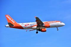 "(ORY) Easy Jet Airbus A330-214 OE-IVK ""Nantes livery""Landing runway 06 (dadie92) Tags: ory orly lfpo nantes easyjet oeivk airbus a330 a330214 landing spotting runway06 airplane aircraft speciallivery nikon d7100 tamron sigma danieldanel"