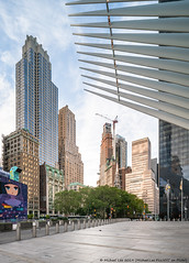 Oculus and Lower Manhattan (20190615-DSC00674) (Michael.Lee.Pics.NYC) Tags: newyork wtc worldtradecenter oculus lowermanhattan architecture cityscape shiftlens sony a7rm2 laowa12mmf28 magicshiftconverter