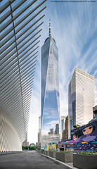 Oculus and WTC (20190615-DSC00660-Edit) (Michael.Lee.Pics.NYC) Tags: newyork wtc worldtradecenter oculus lowermanhattan architecture cityscape shiftlens sony a7rm2 laowa12mmf28 magicshiftconverter