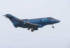 Hawker 800 / U-125A (Boushh_TFA) Tags: hawker 800 u125a 023027 27 komatsu airbase airport kmq rjnk japan air selfdefense force jasdf ishikawa nikon d600 nikkor 300mm f28 vrii