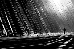 Jogger in the City (heinzkren) Tags: schwarzweis blackandwhite monochrome noiretblanc street streetphotography city lines sun canon powershot magic mystery building reflection urban austria vienna human sport läufer running light shadow silhouette