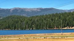 Lake Almanor (valeehill) Tags: overthehillsisters lakealmanor oths plumascounty reservoir california roadtreking plumasnationalforest prattville
