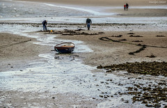 Pettycur Bay (MC Snapper78) Tags: scotland nikond3300 landscape firthofforth pettycurbay marilynconnor