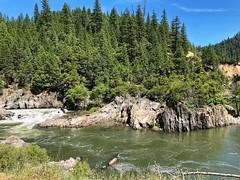 Indian Creek in Plumas County (valeehill) Tags: oths overthehillsisters indiancreek plumascounty plumasnationalforest crescentmills creek california forest roadtreking