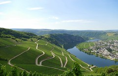 Beautiful view of the valley (marco25810) Tags: beautiful view river valley germany mosel wein wine streets rhineland mountains village landscape ausblick fluss tal berge deutschland