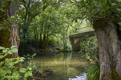 """Little bridge over the """"Vers"""" (domingo4640) Tags: lot vers valleeduvers eau riviere levers loxia loxia21 loxia2821 paysage paysagebuccolique pont departementdulot tourismelot"""