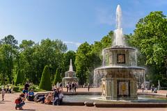 St. Petersburg (stefan_fotos) Tags: europa landschaft park peterhof qf russland stpetersburg urlaub russia europe russian federation palace garden fountain