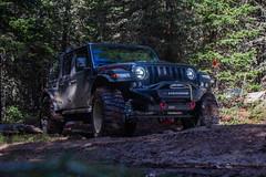 IMG_1048 (jeffreyshanor) Tags: visitsheridan jeep jeeps crawlers mountains adventure explore nature travel leisure wyoming mountain bighorns sheridan summer safari earth