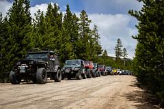 IMG_0950 (jeffreyshanor) Tags: visitsheridan jeep jeeps crawlers mountains adventure explore nature travel leisure wyoming mountain bighorns sheridan summer safari earth