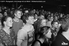 2019 Bosuil-Het publiek bij Fatal Flowers 8-ZW