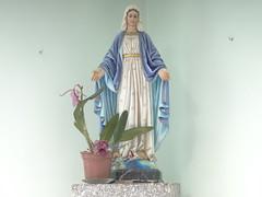 DSC09271 Imagem Nossa Senhora Das Graças Em Igreja Em Mosteiro Santíssima Trindade Em Monte Sião MG (Marcos Adriani Pratta) Tags: sony dschx100v hx100v iso100 montesião montesiãomg brasil cidadesbrasileiras