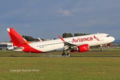 A320-251N VQ-BXA ex PR-OBD AVIANCA colours (shanairpic) Tags: jetairliner passengerjet a320 a320neo airbusa320 neo shannon avianca eirtech iac azul probd vqbxa
