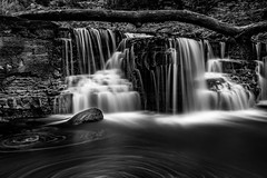 Solstice At Caron Falls Mono - Caron Park (j-rye) Tags: sonyalpha sonya7rm2 ilce7rm2 mirrorless monochrome water rocks tree longexposure nature waterfall stream creek tamron2875