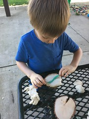 "Making Bug Molds • <a style=""font-size:0.8em;"" href=""http://www.flickr.com/photos/109120354@N07/48123090373/"" target=""_blank"">View on Flickr</a>"