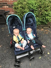 """Sam and Luc in Their Stroller • <a style=""""font-size:0.8em;"""" href=""""http://www.flickr.com/photos/109120354@N07/48123105717/"""" target=""""_blank"""">View on Flickr</a>"""