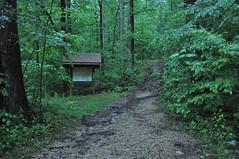 Hoosier National Forest D trail (Brown County) (bernadette196) Tags: indiana indianauniversity cre eppley centerforruralengagement eppleyinstituteforparksandpubliclands eppleyinstitute uplandcounties browncounty forest hoosiernationalforest hnf multiuse dtrail