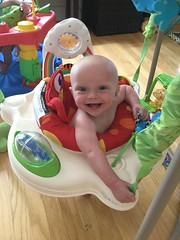"""Sam in His Bouncer • <a style=""""font-size:0.8em;"""" href=""""http://www.flickr.com/photos/109120354@N07/48123185327/"""" target=""""_blank"""">View on Flickr</a>"""