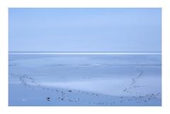 Footprints | Stokknes Beach, Iceland (www.davidrosenphotography.com) Tags: beach sand rocks blue pattern minimal minimalist iceland stokknes landscape seascape sunshine