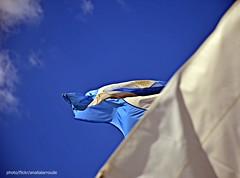 """20 de junio """" Día de la Bandera"""" (Aprehendiz-Ana Lía) Tags: nikon argentina flickr bandera díadelabandera celesteyblanca cielo embarcación vela nubes azul sol luz símbolo nacional líneas diagonal analialarroude exterior aurora patria banderas argentinos"""
