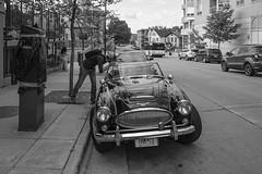 169/365 (local paparazzi (isthmusportrait.com)) Tags: 365project fujixpro2 fujixf18mmf2 xf fuji 18mm f2 fixed aperture lopaps pod 2019 redskyrocketman localpaparazzi isthmusportrait madisonwi danecountywisconsin isthmus black white blackandwhite negro blanco raw fujiraw adobephotoshopcc downtownmadison downtown austinhealey3000 classic sportscar classiccar car automobile photographer photographing iso250 vanity vanityplate chrome grill front