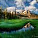 Stanley Lake Marsh Idaho