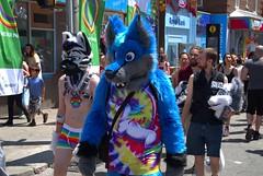 029 -1vib (citatus) Tags: furries walking church street wellesley east gay village pride 2019 toronto canada summer evening pentax k1 ii