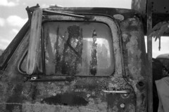 Truck with Muck (macromary) Tags: analog florida foma fomapan fomapan100 blackwhite analogphotograph bw blackandwhitefilm filmcamera film mechanicalcamera vintage vintagecamera rodinal 35mm nikkor 50mm 50mmlens 35mmfilm f14 nikonf100 f100 nikon monotone southern urbex rurex flurbex abandoned derelict stjohnscounty hastings truck rust lichen