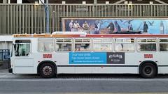 171226_26_Muni8129fishwharfsf (AgentADQ) Tags: san francisco california fishermans wharf muni 8129 transit bus trolleybus