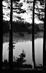 6Q3A3669 – kopio (www.ilkkajukarainen.fi) Tags: järvi lake mustavalkoinen monochrome blackandwhite suomi finland finlande eu europa scandinavia visit travel travelling happy life museum stuff uusimaa