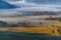 Туманность #своифото, #пейзаж, #природа, #утро, #рассвет, #дерево, #натура, #восход, #sunrise, #nature, #tree, #Landscape, #sun, #туман, #лучи, #foggy, #Landscape, #photo, #photography, #travel, #instagram, #tagsforlikes, #summer, #bestoftheday, #photooft (ЛеонидМаксименко) Tags: photooftheday natureofrussia sunrise natgeoyourshot tagsforlikes лучи instagram sun summer природа amazing пейзаж красиваяроссия natgeoru восход natureofrussiaru uralinsta утро sky foggy landscape дерево nature своифото tree туман photo etonashural southural natgeorussia russbeauty bestoftheday fotoural рассвет натура небо пейзажироссии небоголубое travel photography