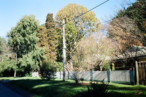 A sunny power lines pole