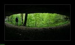 Abri sous roche du canyon de Fontenu - Jura (francky25) Tags: abri sous roche du canyon de fontenu jura franchecomté karst