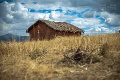 Mudbrick House (shapeshift) Tags: 50mm 50mm18 d700 abandoned adobe clouds cusco cuzco davidpham davidphamsf highlands landscape mudbrick nikon peru shack shapeshift sky smalltown southamerica thatched theamericas town travel village yuncaypata qosqo