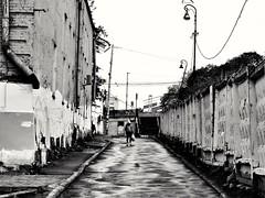 this city dies (Sergei_41) Tags: москва россия город улица стена забор чб монохром tz100 panasonic lumix russianphoto russia decay urbanstyle urban urbex moscow city citylife cityscape fence walls monochrome monochromatic streetphoto streetphotographer street streetphotographers streetlife streetphotography wb bw noir gloomy blackandwhite blancoynegro blackandwhitephotography blackwhite blackandwhitephoto bnwcity bnwmood bnw asphalt dies