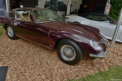 1966 Aston Martin DBSС Touring (pontfire) Tags: 1966 aston martin dbsс touring dbs 66 concours d'elégance suisse château de coppet david brown voiture voitures cars autos automobile automobili automobiles coche coches carro carros wagen pontfire bil αυτοκίνητο 車 автомобиль classique ancienne vieille collection old antique vieux luxe luxury exception au british anglaise england car oldtimer automotive anglais english britain gb véhicule vintage am prestige sport sports dexception du 自動車 מכונית luxueuse very rare très délégance swiss svizzera schweiz confoederatio helvetica