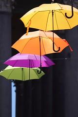 Colors. (giuselogra) Tags: colors colori torino turin piedmont piemonte italy italia