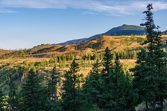 Hills Touched by Wildfire (MIKOFOX ⌘) Tags: canada trees forestfire wildfire britishcolumbia xt2 forest learnfromexif july landscape provia hills fire fujifilmxt2 summer showyourexif mikofox xf18135mmf3556rlmoiswr