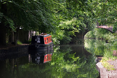 Basingstoke Canal Mytchett-Ash Vale 24 June 2019 002 (paul_appleyard) Tags: basingstoke canal mytchett surrey june 2019 cefngoleu thewho narrowboat water waterway still calm trees green reflections reflected boat