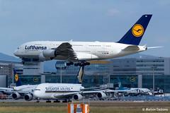 Lufthansa Airbus A380-841  |  D-AIMB  |  Frankfurt Rhein-Main  - EDDF (Melvin Debono) Tags: lufthansa airbus a380841 | daimb frankfurt rheinmain eddf cn 041 melvin debono spotting canon plane planes photography airport airplane aircraft aviation deutschland germany fra