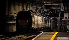 StratfordInternationalRailStation2019.06.08-11 (Robert Mann MA Photography) Tags: stratfordinternationalrailstation stratford londonboroughofnewham greaterlondon 2019 summer 8thjune2019 train trains railway railways station stations highspeedone eurostar class374 e320 southeasternhighspeed class395 javelin