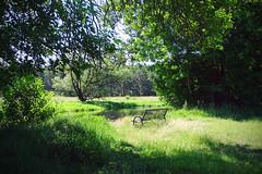 Gemütliches Plätzchen (bernstrid) Tags: brandenburg hangelsberg grünheide spree wasser fluss bäume grün explorer explore
