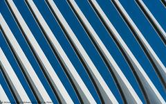 Oculus Wing (20190615-DSC00689) (Michael.Lee.Pics.NYC) Tags: newyork oculus wtc worldtradecenter santiagocalatrava architecture sky sunlight shadow wing sony a7rm2 fe24105mmf4g